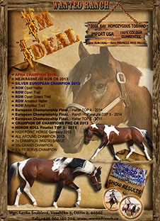 IM IDEAL Wanted Ranch